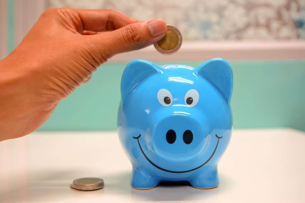 Person Putting Coin in Piggy Bank